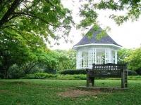 新加坡植物園4
