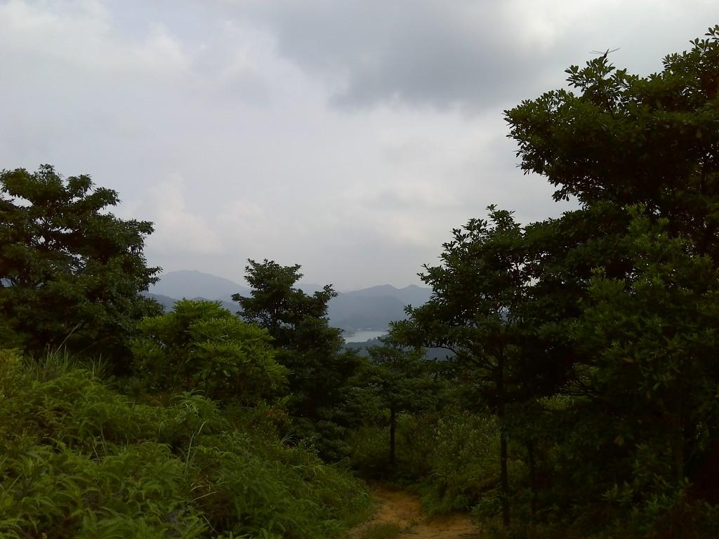 香港生態旅遊:大帽山