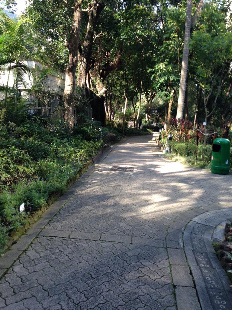 園中到處是這樣的林蔭小徑