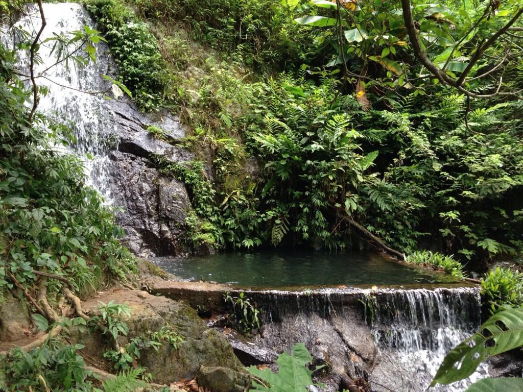 香港生態旅遊:梧桐寨