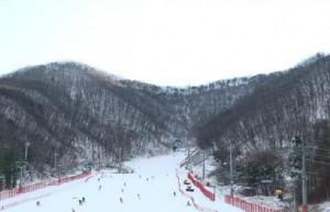 冬季體驗─芝山森林滑雪渡假村